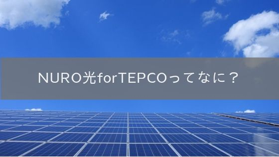 NURO光 for TEPCOを解説